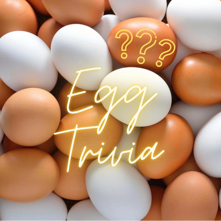 brown and white eggs trivia