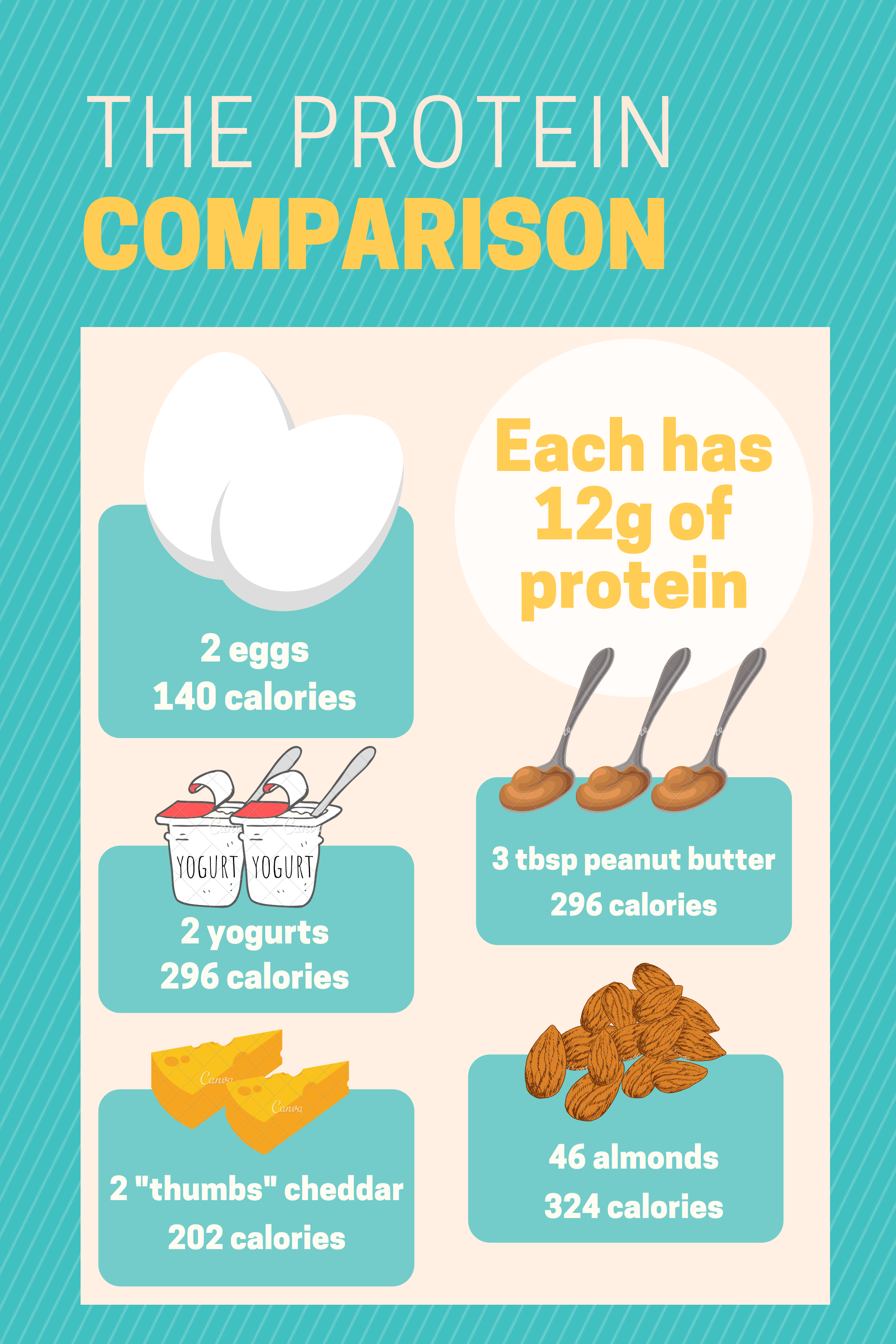 infographic of 12g of protein across various types of foods