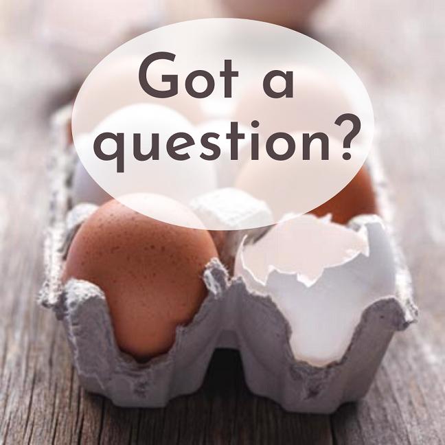 egg carton questions